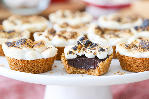 Mini S'mores Tarts Recipe