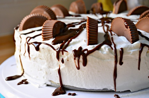 Peanut Butter Fudge Ice Cream Cake