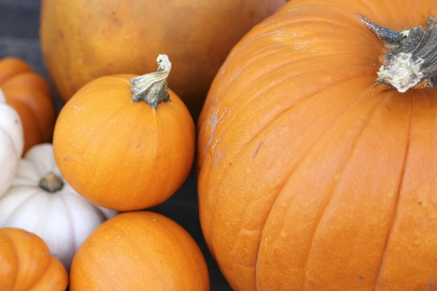 In Season: Pumpkin
